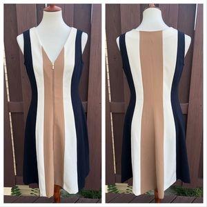 Ann Taylor Sleeveless Zipper Dress Vertical Stripe